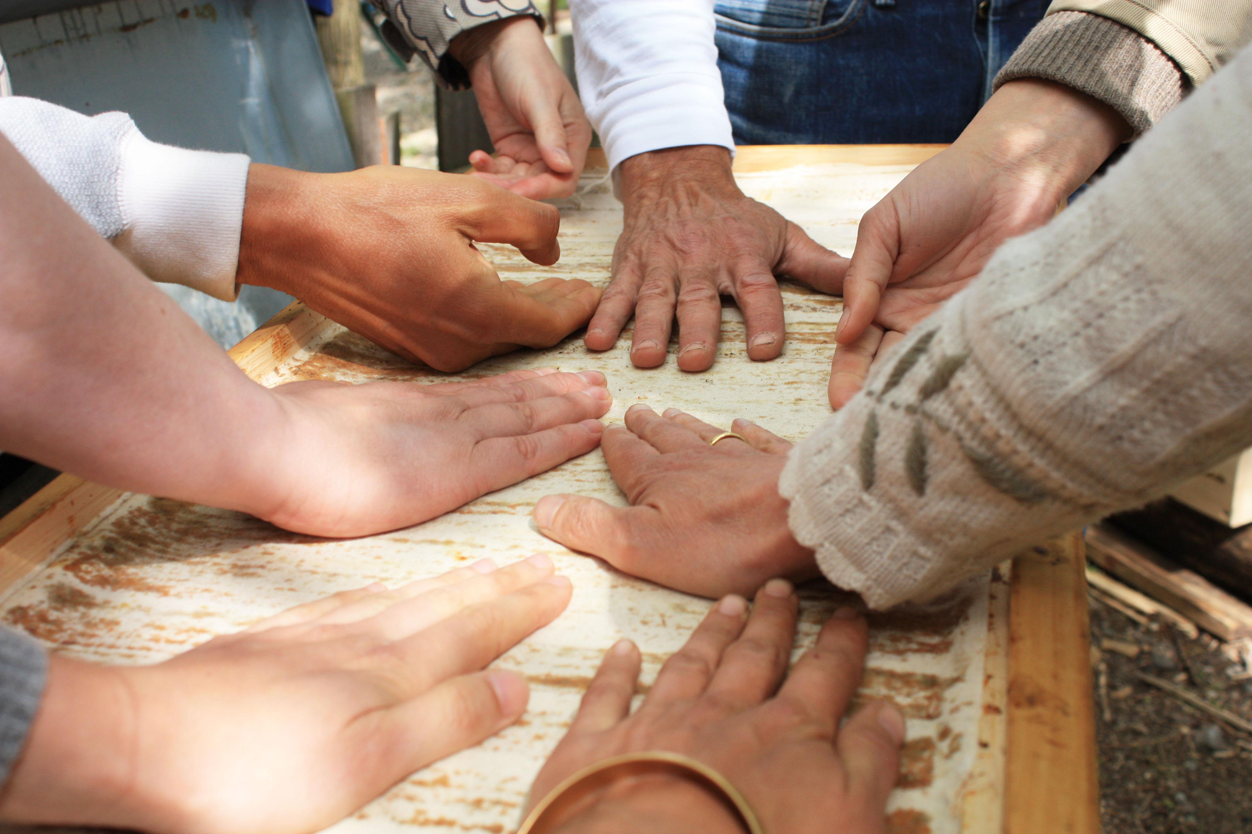 Mellifera Regionalgruppe – Hände auf der Top-Bar-Hive