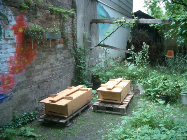 Bienenkisten im Neuköllner Hinterhausgarten