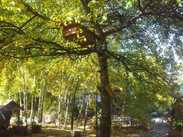 Schwebende Bienenkiste Prinzessinnengarten