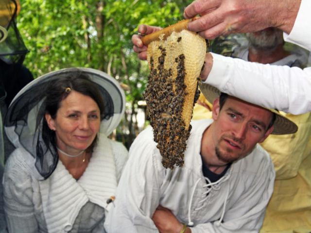 Prinzessinnengarten Kurse zur wesensgemäßen Bienenhaltung, Foto: Angelika-Sust