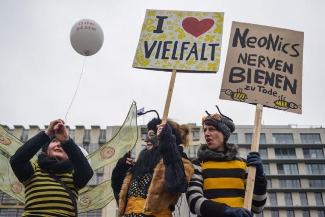 """Bienenperformance auf der jährlichen Demonstration in Berlin """"Wir haben es satt"""" Foto: Marc Marquardt"""