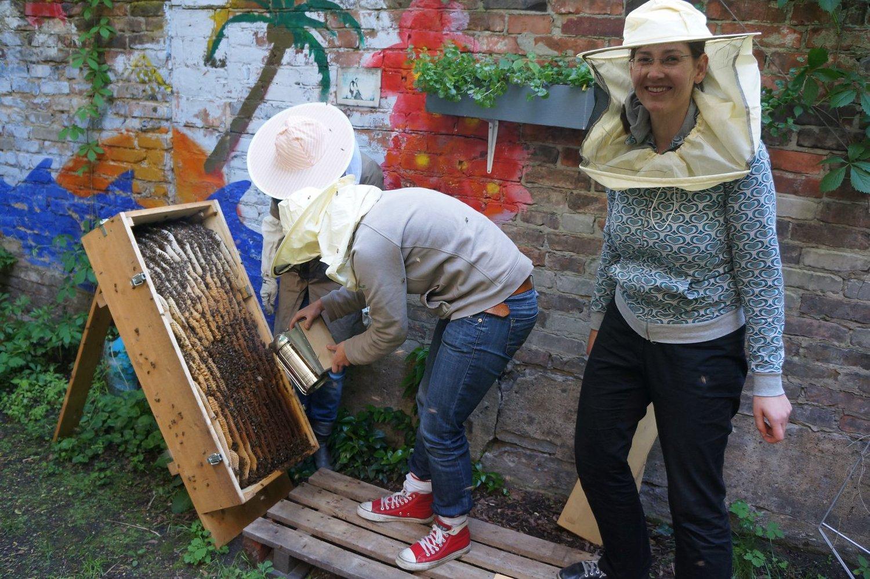 Sandra mit Schleier vor der Bienenkiste