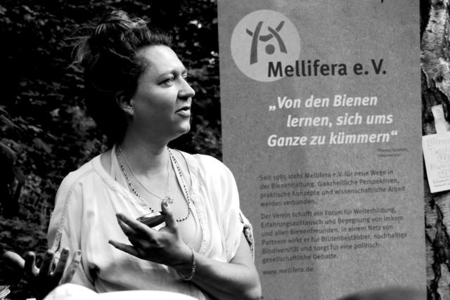 Bienenführung & Workshop, Foto: Nikolaus-Seubert