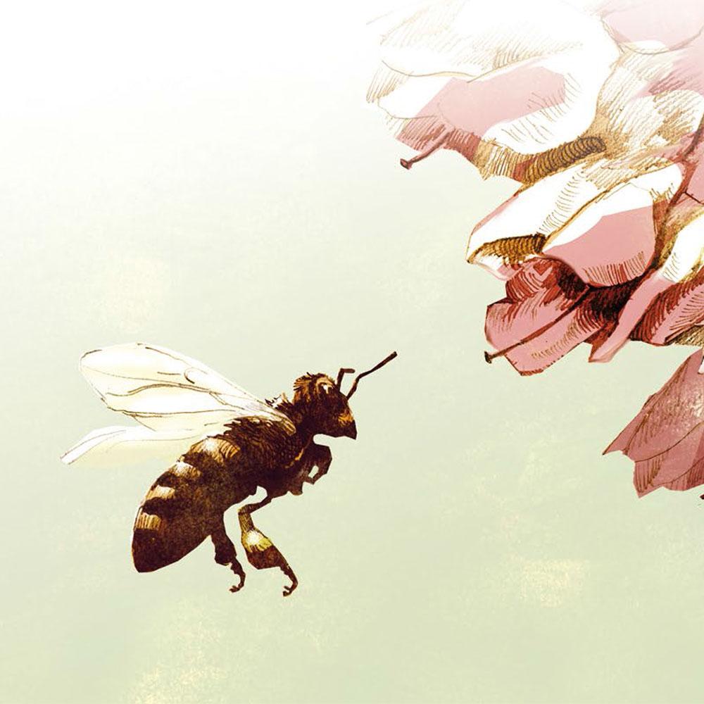 Aurelia Stiftung Berlin Es lebe die Biene Vortrag und Podiumsdiskussion im Kühlhaus Berlin