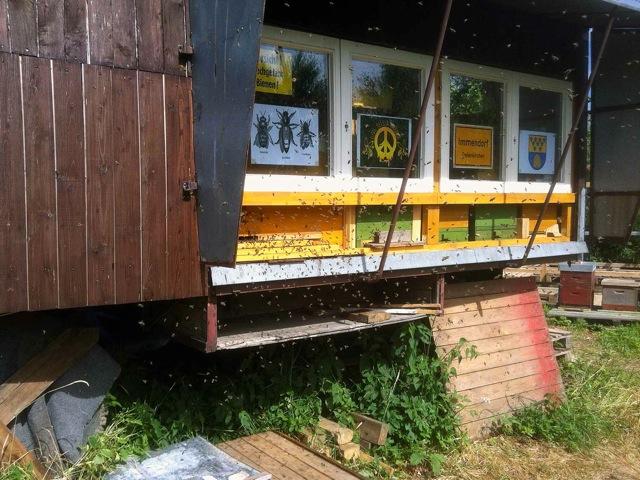 Bienenstand in einem unserer Bienenwagen mit Einraumbeute und 1,5 Deutsch Normal Maß Beuten