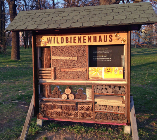 Wildbienenhaus Potsdam