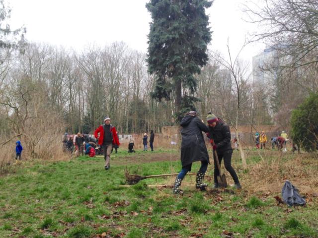 Pflanzung Leisepark · Foto: Silke Meyer
