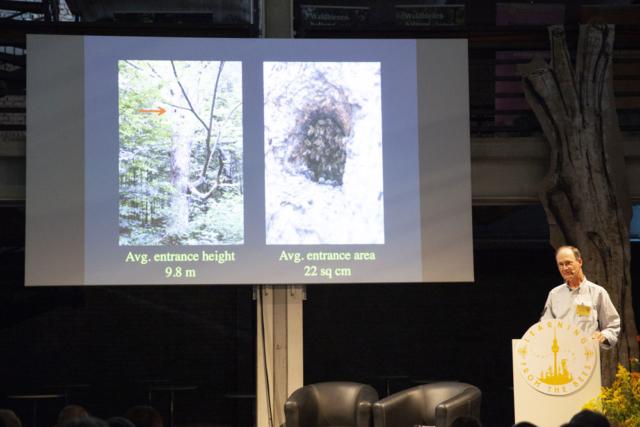 Der bekannte Bienenforscher Thomas D. Seeley bei seinem Vortrag bei Learning from the Bees Berlin 2019 · Foto: Onyx Baird