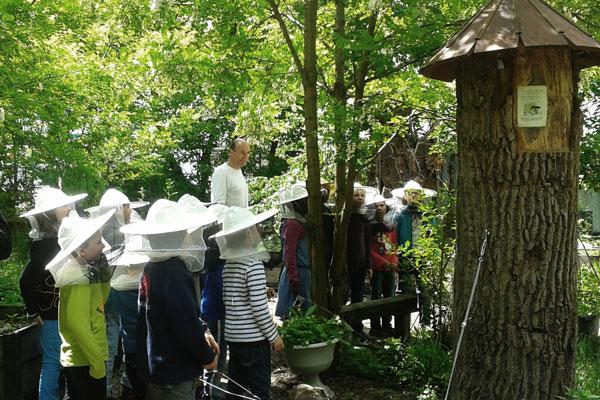 Besuch einer Kitagruppe bei den Bienen in einer Klotzbeute im Prinzessinnengarten